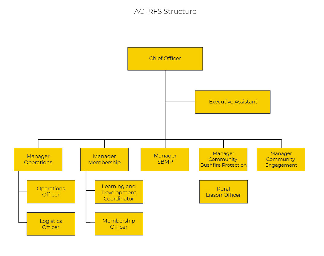 RFS STRUCTURE 1